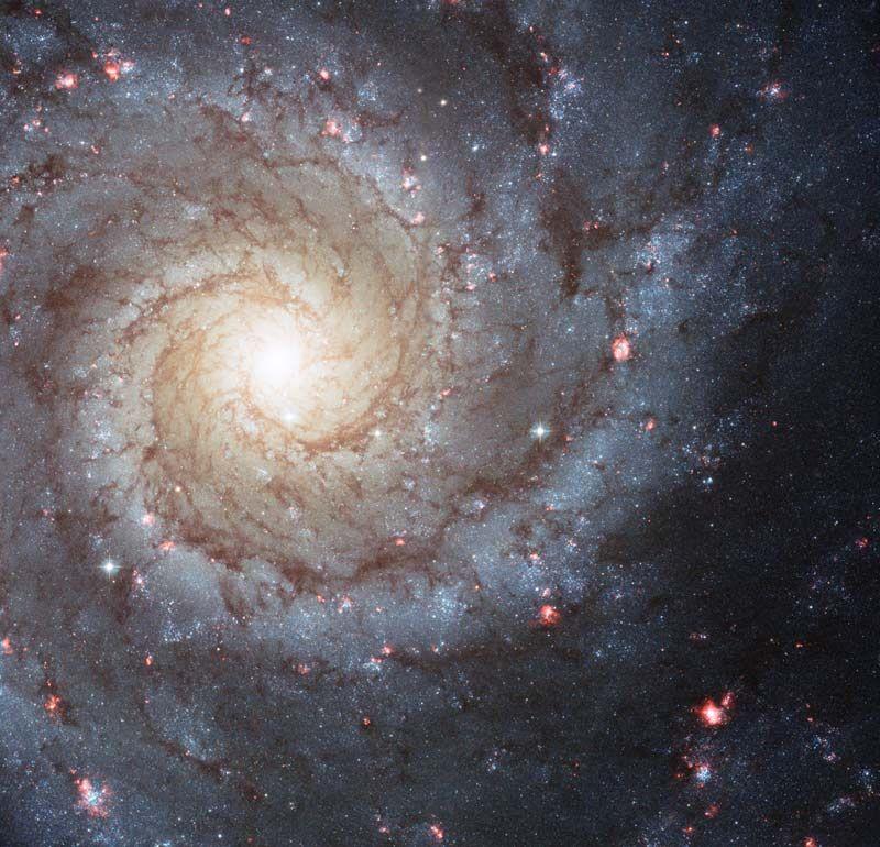 12. Спиральная галактика M74 из созвездия Рыб. Высказываются предположения, что в этой галактике есть черная дыра.