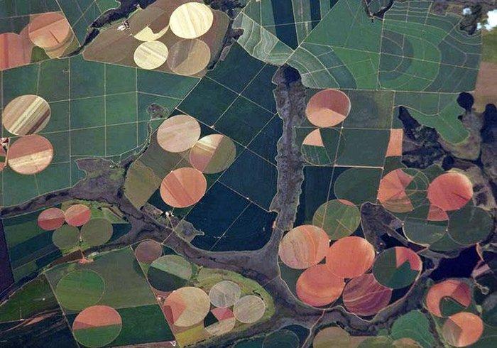 Сельское хозяйство: вид из космоса (8 фото)