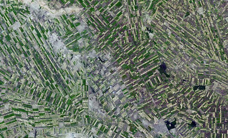 К югу от Хартума, Судан. Вся эта геометрия — тысячи километров искусственных каналов и канав, по которым текут воды Белого Нила и Голубого.