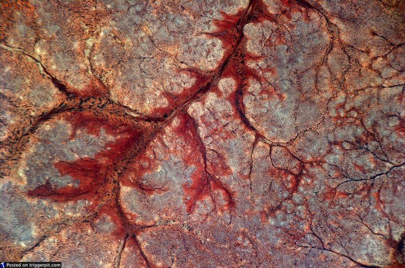 28. Пустыня Сомали<br>Прекрасный красный «коралл» к северу от Бакаадвейн, к западу от Калабадхлмаг. Как будто сама Земля кровоточит. Удивительный снимок. (NASA/ESA)