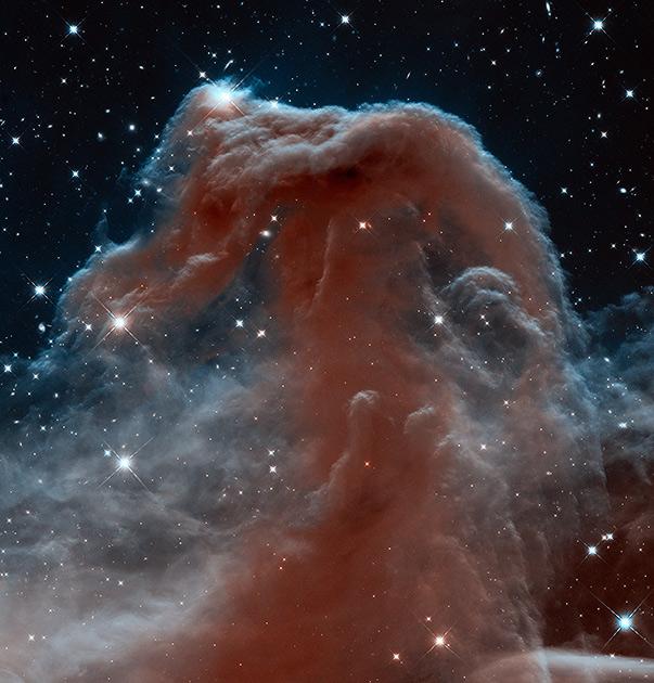 Туманность Конская Голова в созвездии Ориона