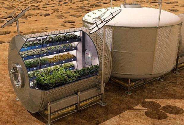 Проект марсианского парника